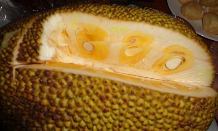 Jackfruit Wedge.png